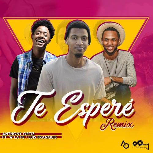 Te Esperé (Remix) de Anthony Ortiz