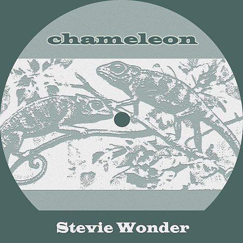Chameleon von Stevie Wonder