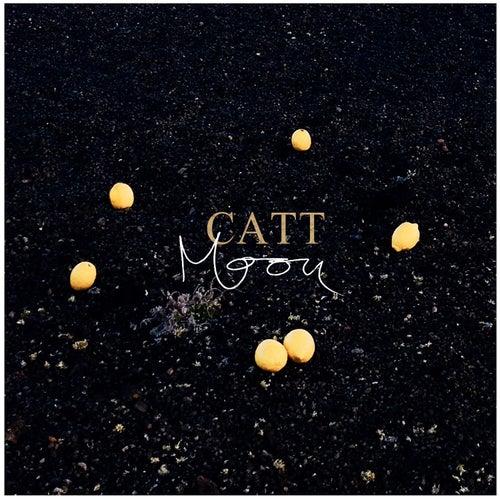 Moon by Catt