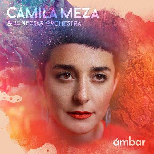All Your Colors de Camila Meza