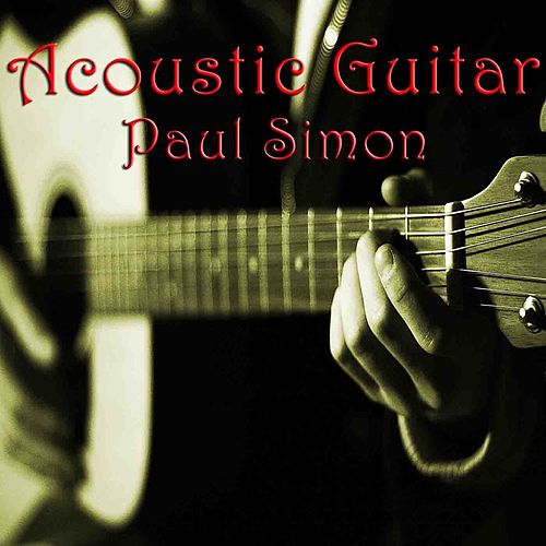 Acoustic Guitar Paul Simon de Wildlife