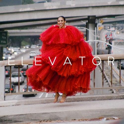 Elevator by Gavin Turek