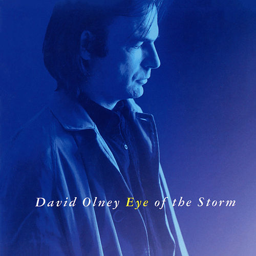 Eye Of The Storm von David Olney