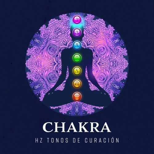 Chakra – Hz Tonos de Curación (Terapia para la Mente, El Cuerpo y las Almas, Meditación y Atención Plena) de Various Artists