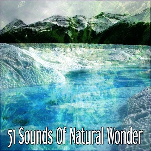 51 Sounds Of Natural Wonder de Meditación Música Ambiente