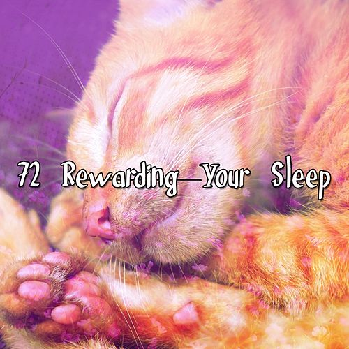 72 Rewarding Your Sleep von Best Relaxing SPA Music