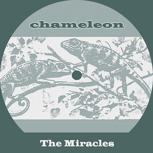 Chameleon de The Miracles