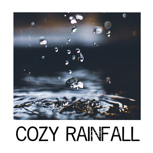 Cozy Rainfall de Sounds Of Nature