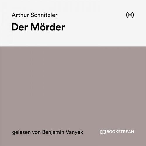 Der Mörder von Arthur Schnitzler