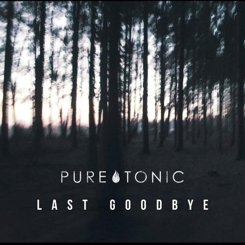 Last Goodbye von Pure Tonic