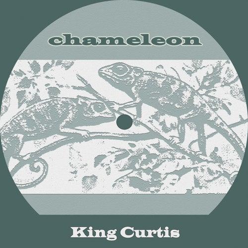 Chameleon de King Curtis