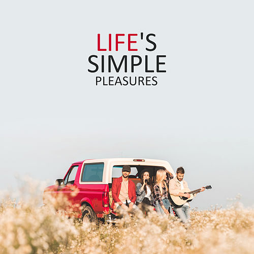 Life's Simple Pleasures: The Most Relaxing Playlist of 2019 von Various Artists