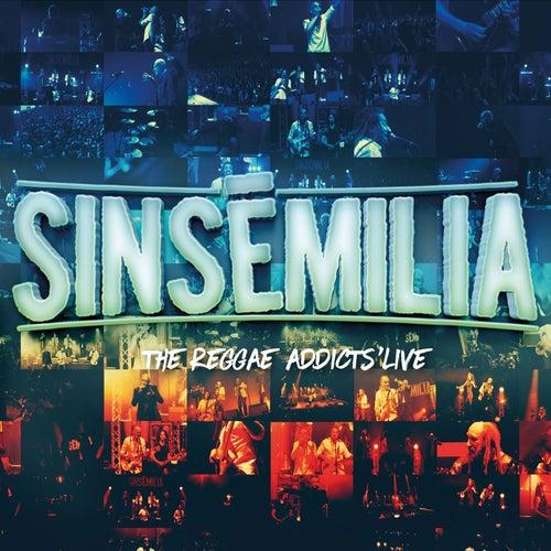 The Reggae Addicts' Live by Sinsemilia