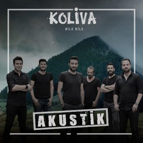 Bile Bile (Akustik) by Koliva