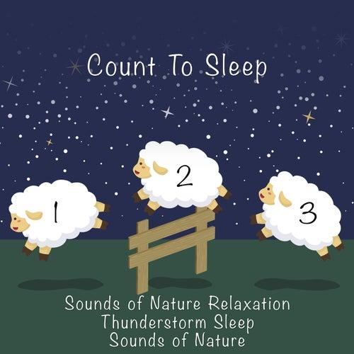 Count to Sleep de Thunderstorm Sleep