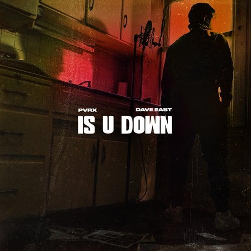 Is U Down by Pvrx
