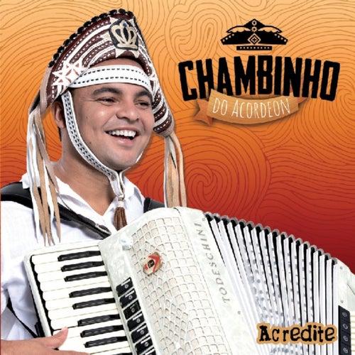 Acredite von Chambinho do Acordeon