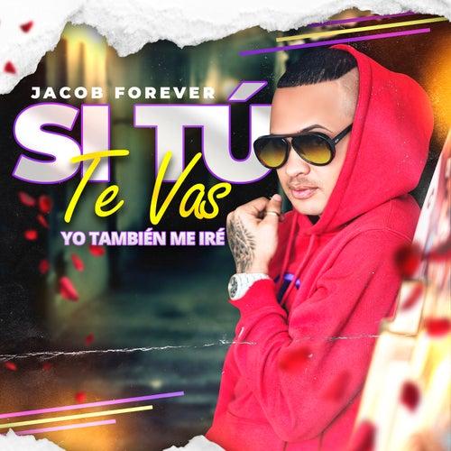 Si Tú Te Vas von Jacob Forever