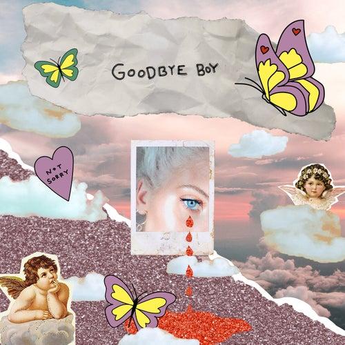 Goodbye Boy by Peg Parnevik