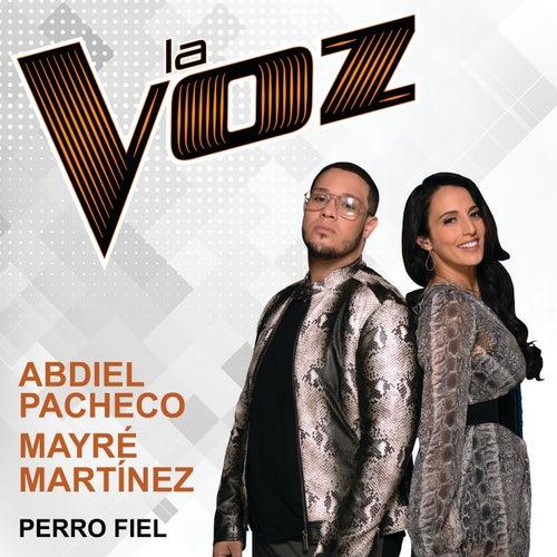 Perro Fiel (La Voz) de Abdiel Pacheco