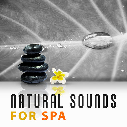 Natural Sounds for Spa – Music for Relaxation, Wellness, Deep Sleep, Peaceful Mind, Music for Body, Soothing Piano by Relaxing Spa Music