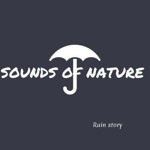 Rain Story de Sounds Of Nature