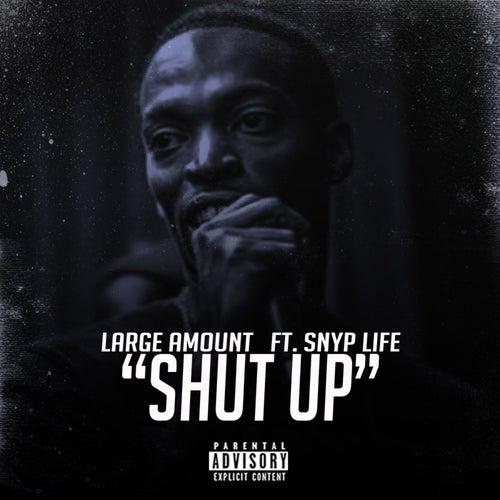 Shut Up de Large Amount