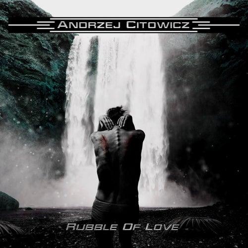 Rubble Of Love de Andrzej Citowicz