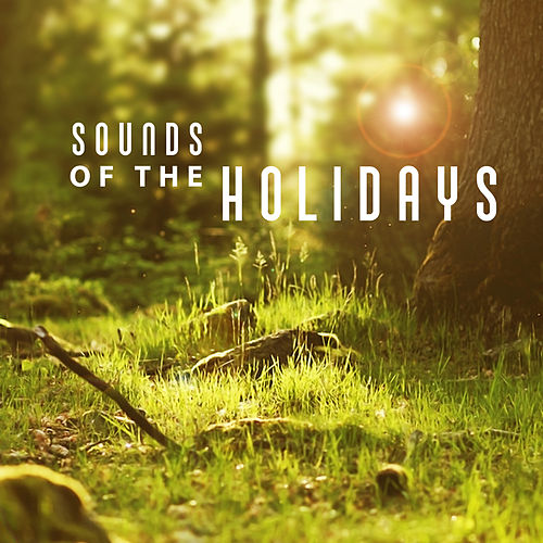 Sounds of the Holidays - Beach Sea and Sand, Beautiful Coast, Memories of the Yacht, Diving in the Sea, Coral Reef, Sound Waves de soundscapes