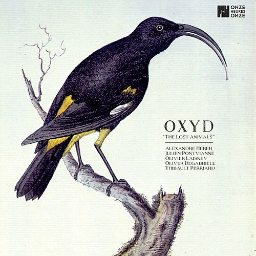 The Lost Animals by Oxyd