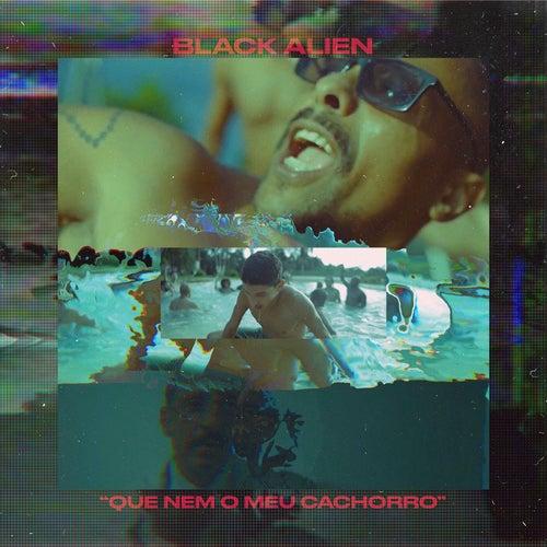 Que Nem o Meu Cachorro by Black Alien