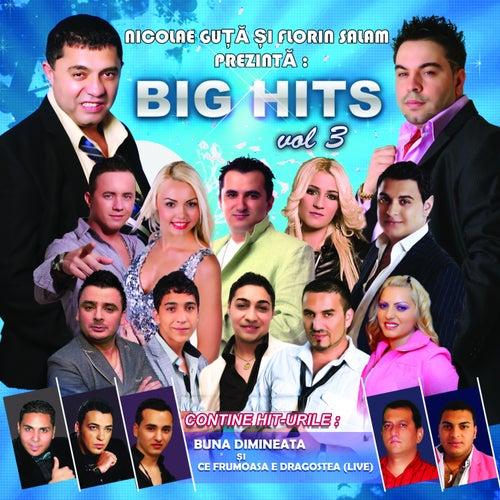 Big Hits, Vol. 3 de Various Artists