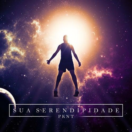 Sua Serendipidade (Remix) by Pknt