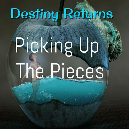 Picking Up the Pieces by Destiny Returns
