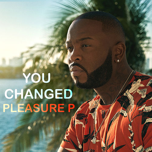 You Changed de Pleasure P