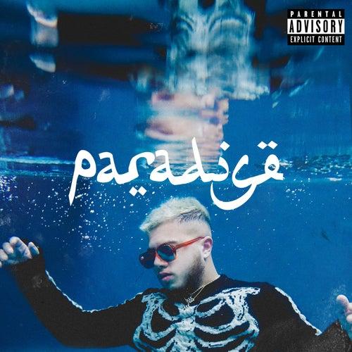 Paradise by Hamza