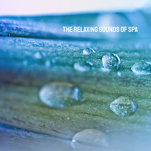 The Relaxing Sounds of Spa by Various Artists