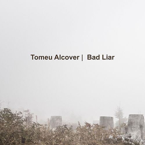 Bad Liar (Guitar Cover) by Tomeu Alcover
