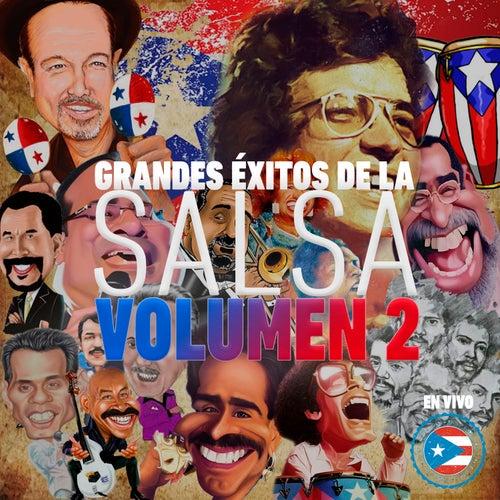 Grandes Éxitos de la Salsa, Vol. 2 (En Vivo) de El Gran Combo De Puerto Rico