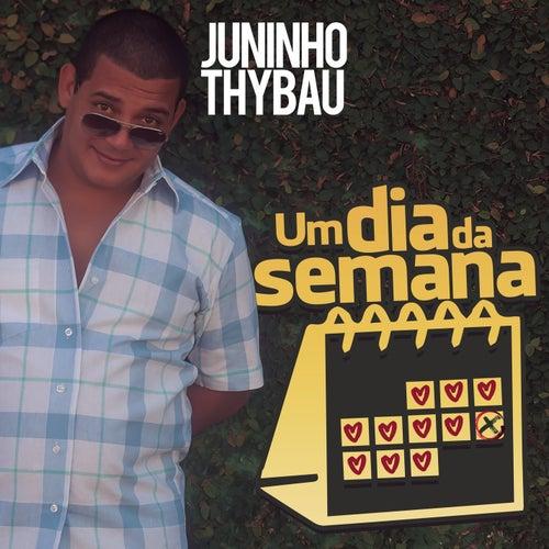 Um Dia da Semana von Juninho Thybau