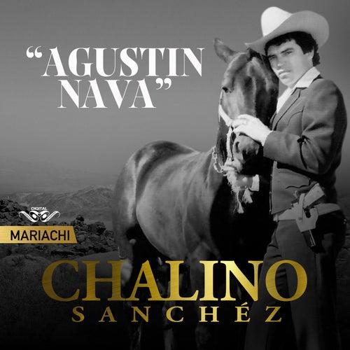 Agustín Nava de Chalino Sanchez