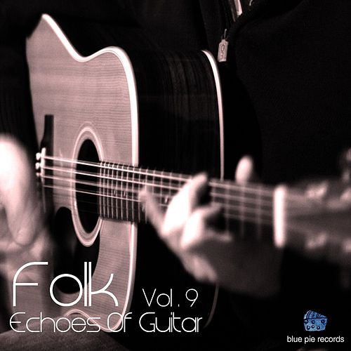 Echoes of Guitar Vol, 9 by Various Artists