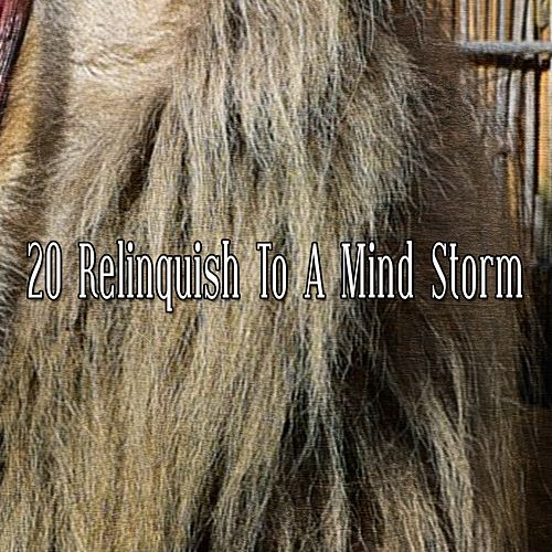 20 Relinquish to a Mind Storm by Rain Sounds (2)