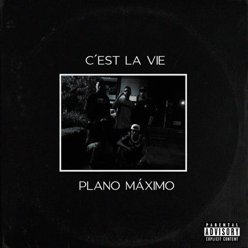 C'est la vie de Plano M