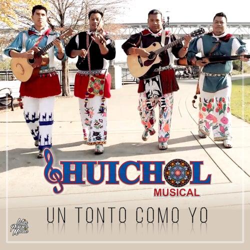 Un Tonto Como Yo by Huichol Musical