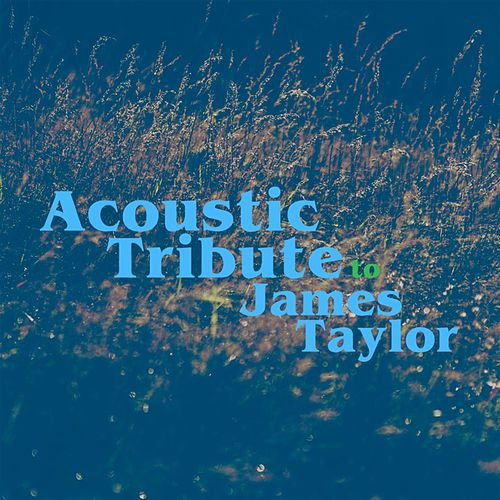 Acoustic Tribute to James Taylor de Guitar Tribute Players