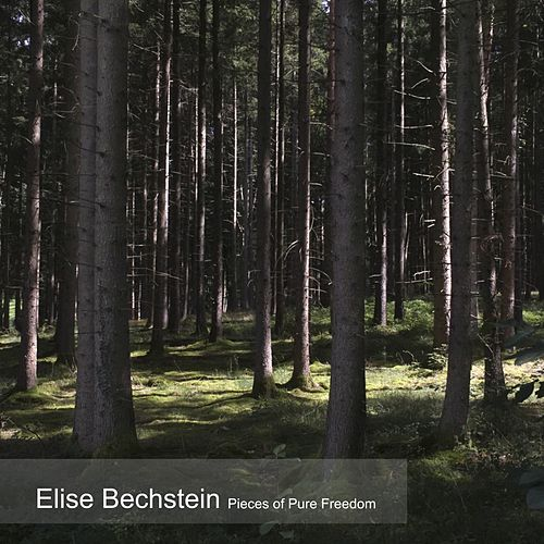 Pieces of Pure Freedom de Elise Bechstein