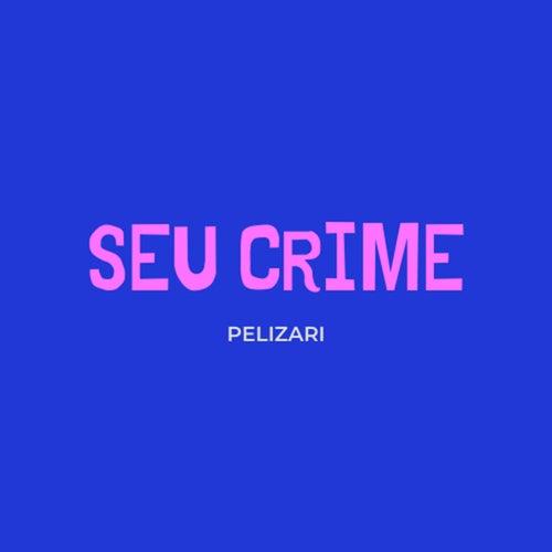 Seu Crime (Cover) von Fernando Pelizari