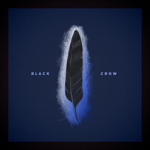 Black Crow di Louis Baker