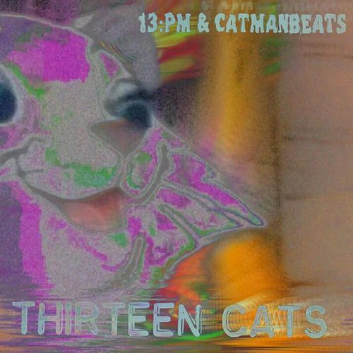 13 Cats by Catman